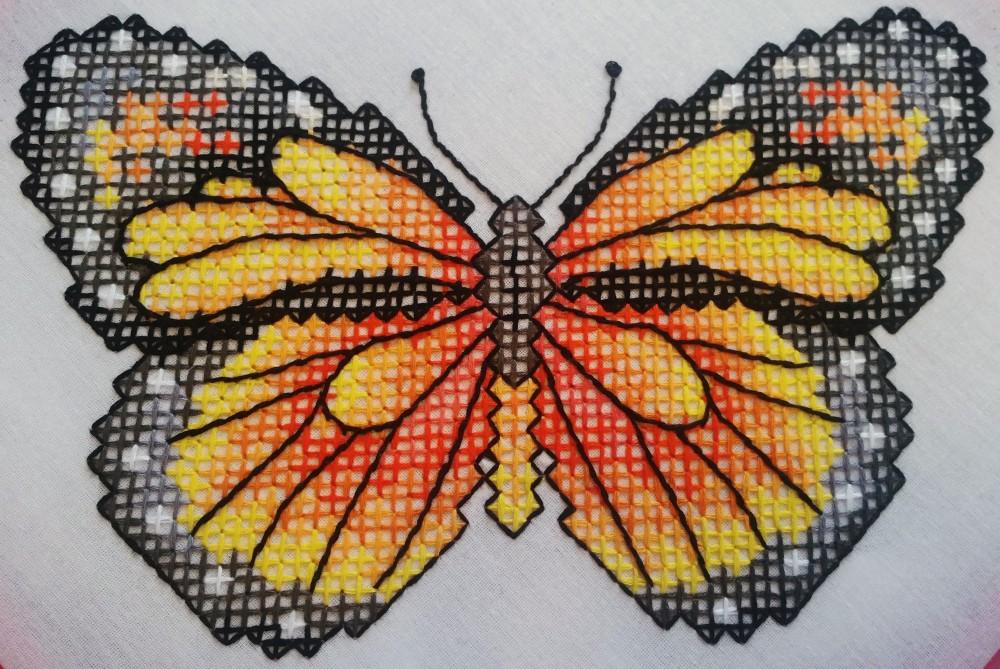 butterfly 162